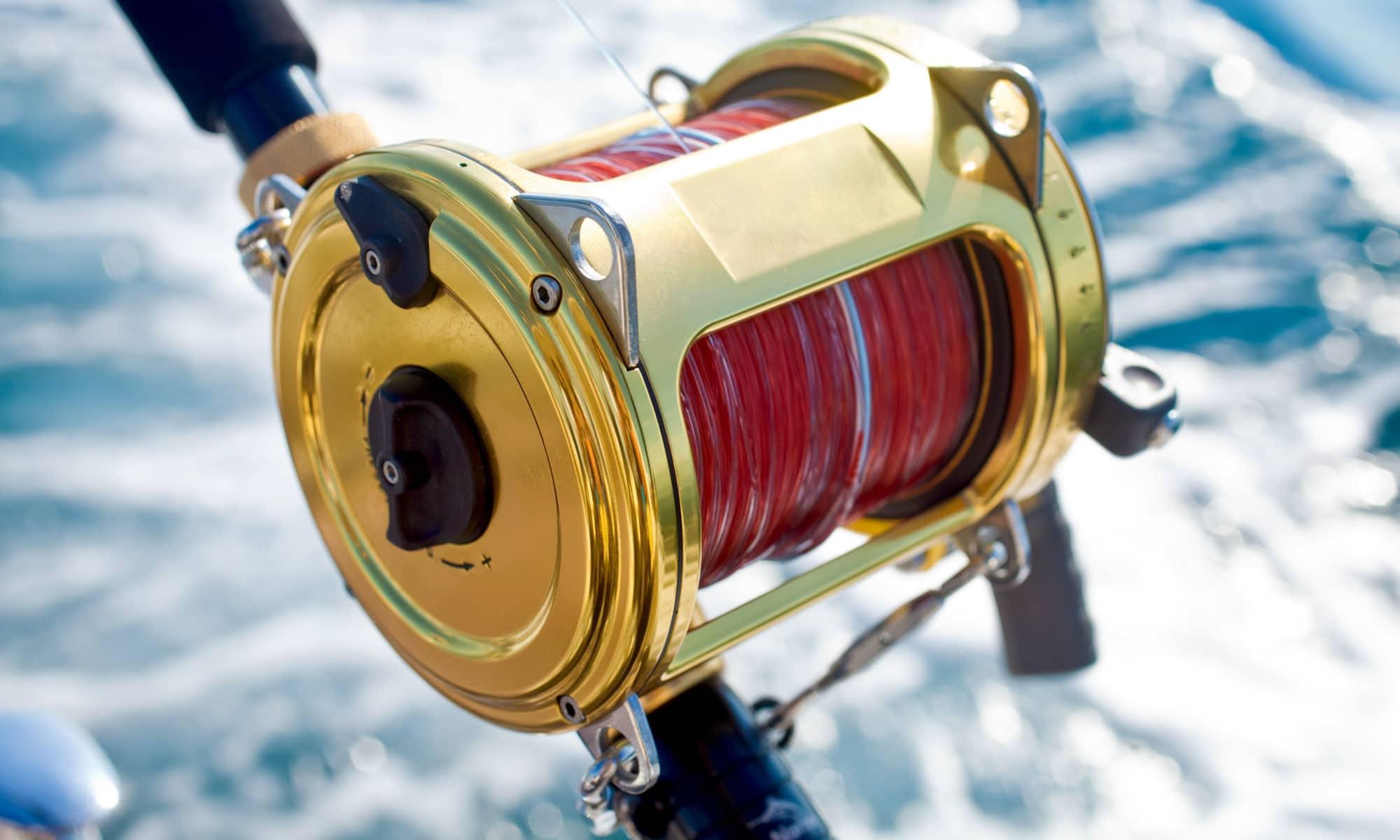 Best Ultralight Spinning Reels Reviewed in Detail